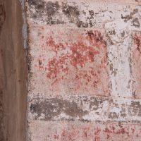 Detalle del estado de conservación de la policromía